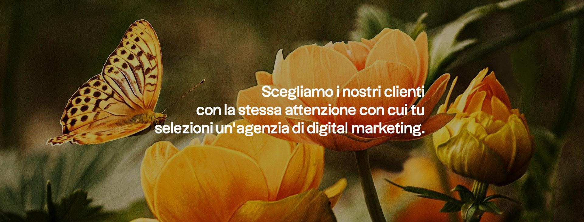 manifesto-5